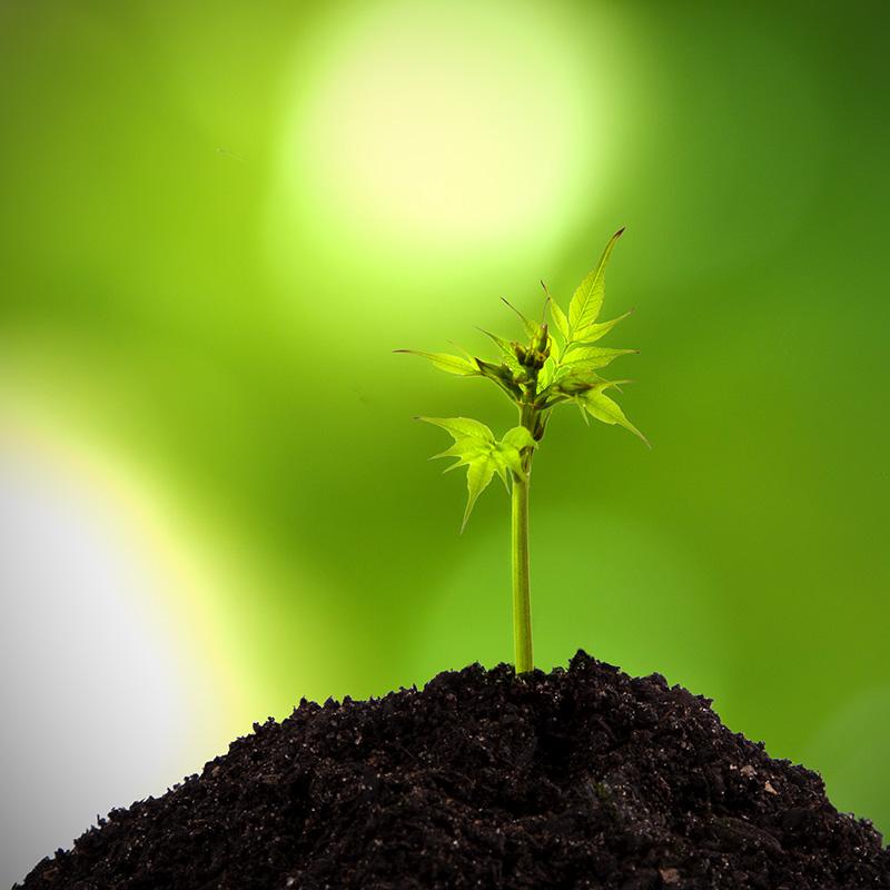 利便性と環境の両立を目指して