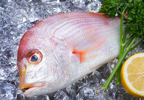 お魚の下処理(ワタ取り等)を承ります